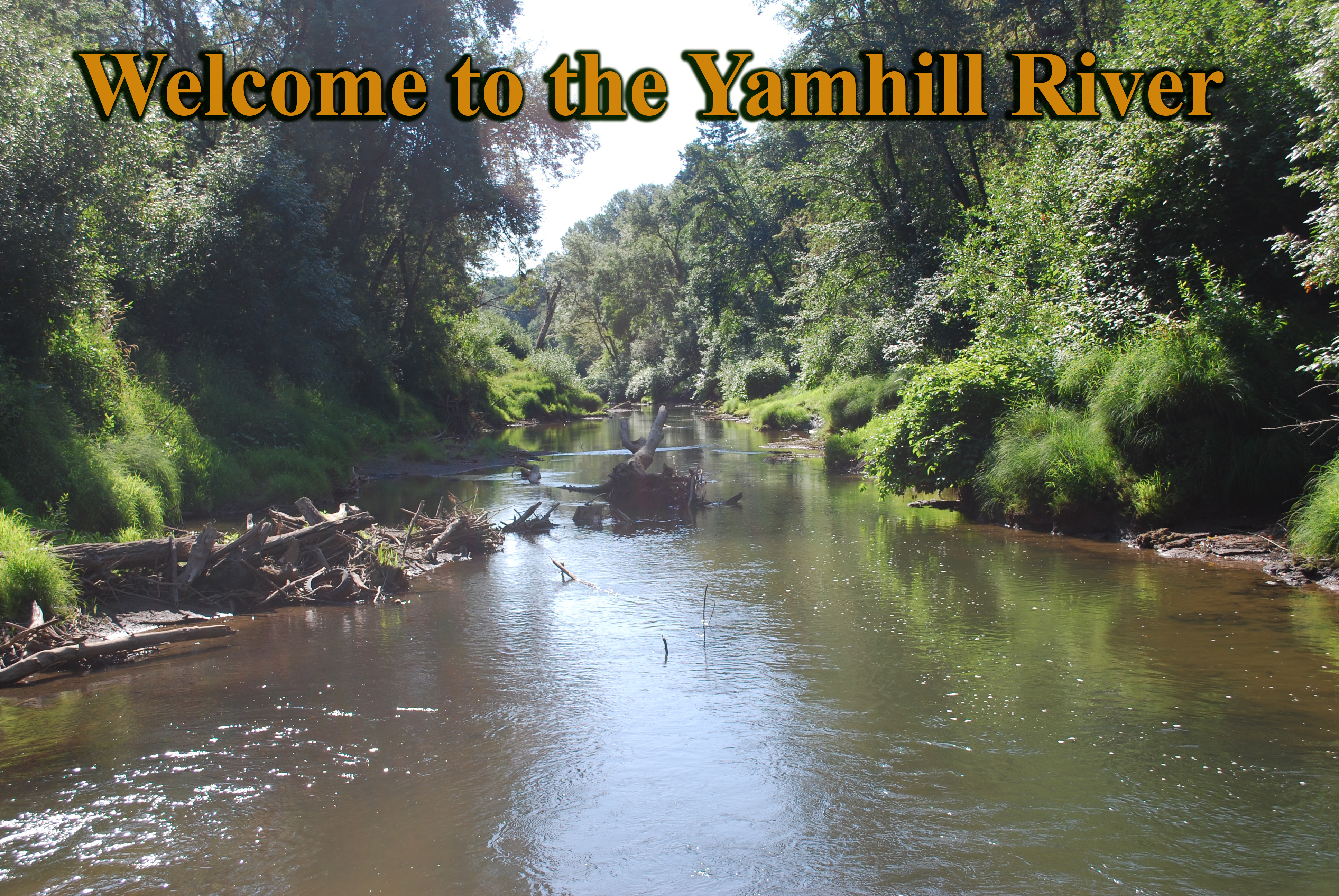 Singles in yamhill oregon